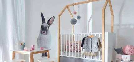 Detska-izba-Pinette